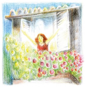 A-rózsás-ház_címlap-rajz